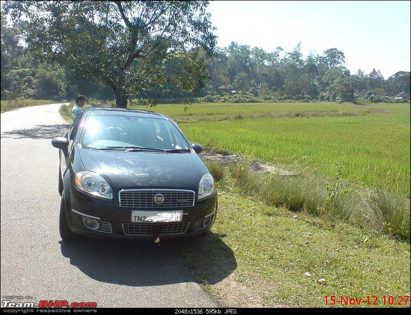 Unexpected love affair with an Italian beauty: Fiat Linea MJD. EDIT: 3 years and 1,07,310 km up!-kodagu-coorg.jpg