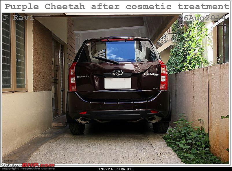 Mahindra XUV500 W8 FWD: My Pet Purple Cheetah-kutralam5.jpg