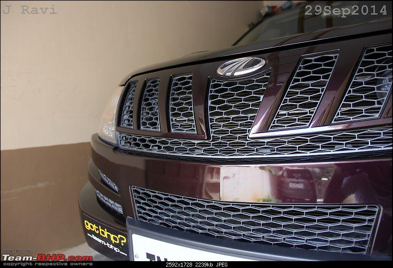 Mahindra XUV500 W8 FWD: My Pet Purple Cheetah-img_1549.jpg