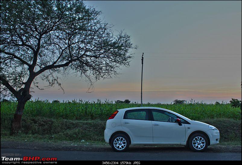 Fiat Punto 90 HP Sports: My Companion. Now, 80000 kms completed!-punto.jpg