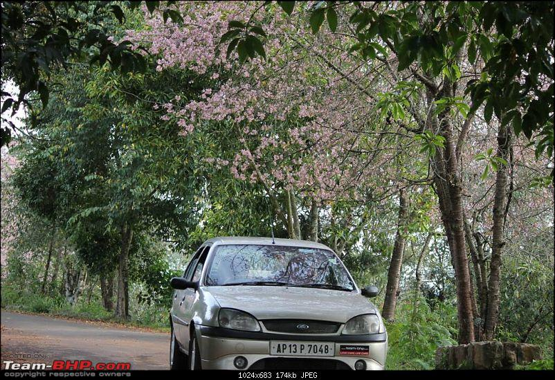 This Ford is my IKON - 89,000 km and 9 years completed-1439675015056.jpg