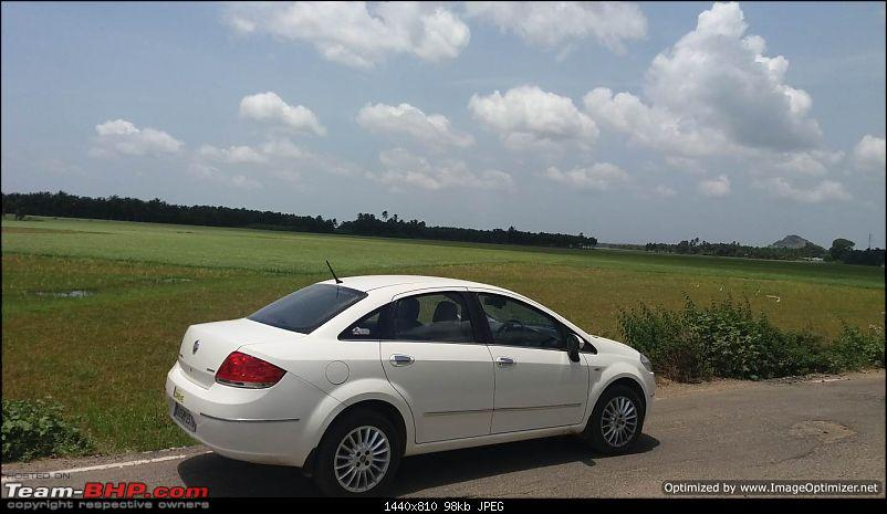 Unexpected love affair with an Italian beauty: Fiat Linea MJD. EDIT: 1,20,000 km up-t7optimized.jpg