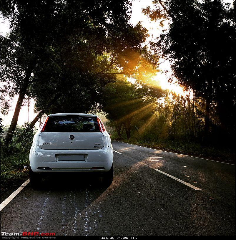 A thin line between genius and insanity - Fiat Grande Punto 90HP - 2,00,000 km up!-img_20181110_084648_599.jpg