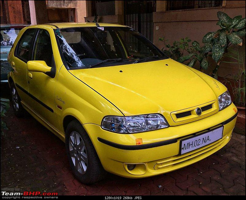 The Cricket Connection - Fiat Palio S10-img_1420.jpg
