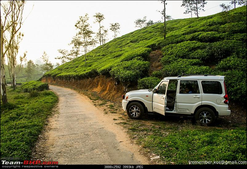 Back to basics! 5 years with a Mahindra Scorpio-valparai-alloys.jpg
