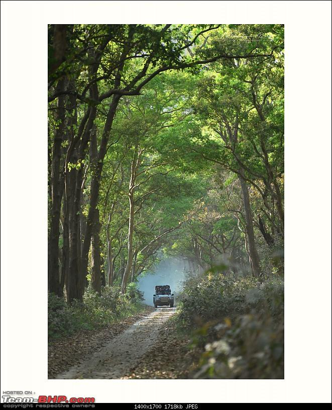 Soldier of Fortune: Wanderings with a Trusty Toyota Fortuner - 150,000 kms up!-_dsc2687_00003b.jpg