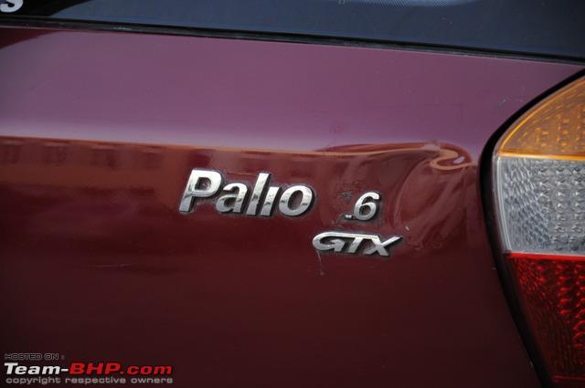 Name:  Palio9.jpg Views: 1081 Size:  108.2 KB