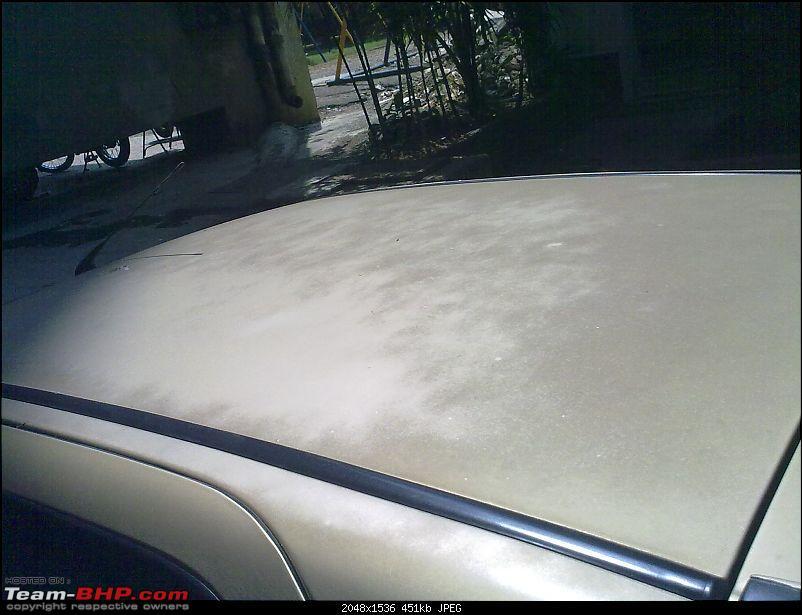 The GTX arriveth. Palio 1.6 GTX-roof.jpg