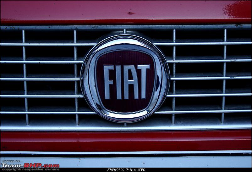 Life with a Fiat Punto *UPDATE* Car sold-img_1460.jpg