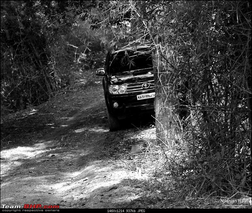 Soldier of Fortune: Wanderings with a Trusty Toyota Fortuner - 100,000 kms up!-dsc_3398.jpg