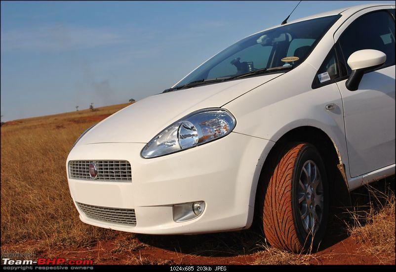 FIAT-Ferrari in affordable trim - My Grande Punto 1.2 Emotion-dsc_7366.jpg
