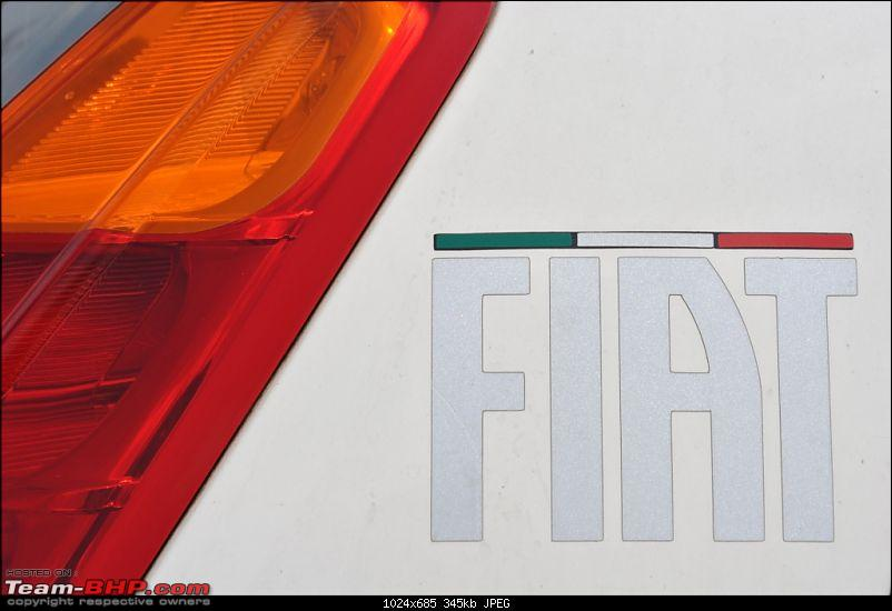 FIAT-Ferrari in affordable trim - My Grande Punto 1.2 Emotion-dsc_2733.jpg