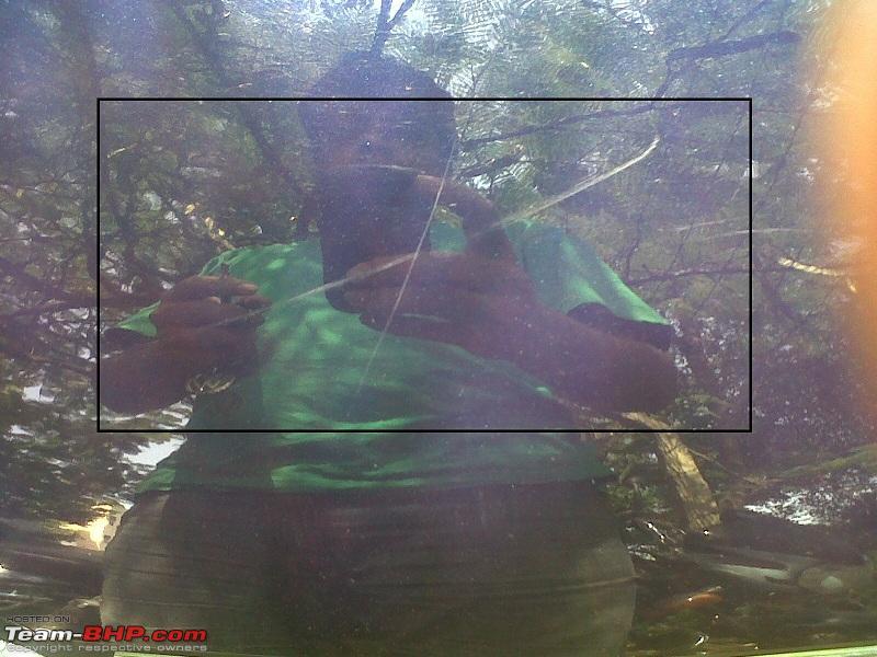 Name:  IMG00089-20111023-1202.jpg Views: 1228 Size:  191.9 KB