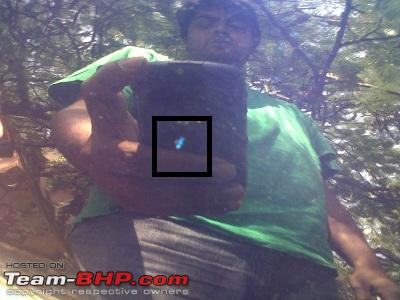 Name:  IMG00093-20111023-1205.jpg Views: 1228 Size:  50.1 KB
