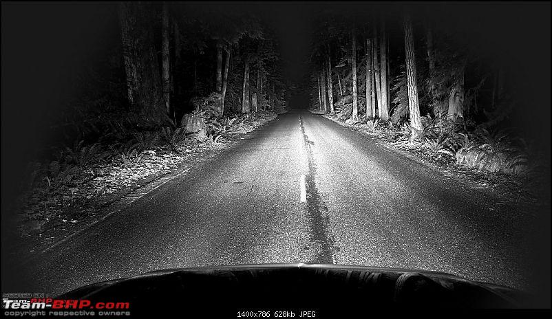 Comprehensive guide to LED Headlight upgrades-2-night-forest.jpg