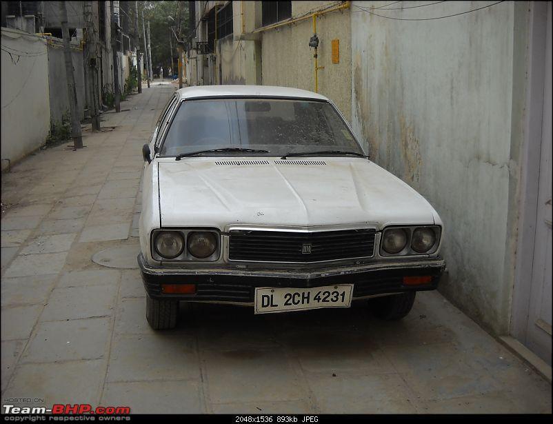 Contessa Classic-dscn0603.jpg