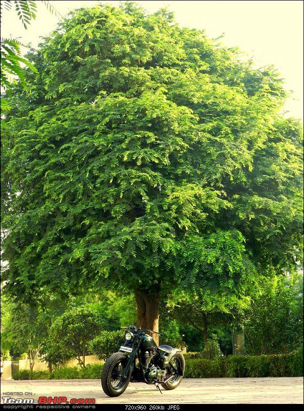 Rajputana Custom Motorcycles - Jaipur-45320_10151109548444565_1939201606_n.jpg