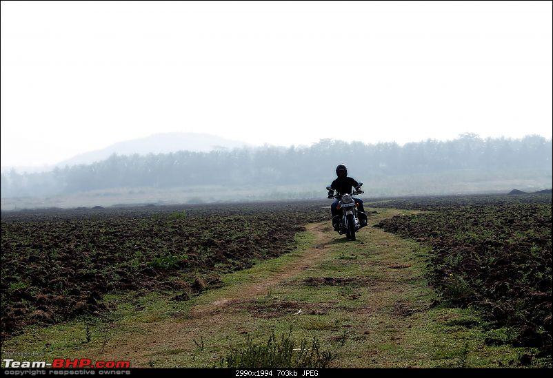Royal Enfield Desert Storm 500 - The Remembrance of a War Era, My Bullet!-edit_1250.jpg