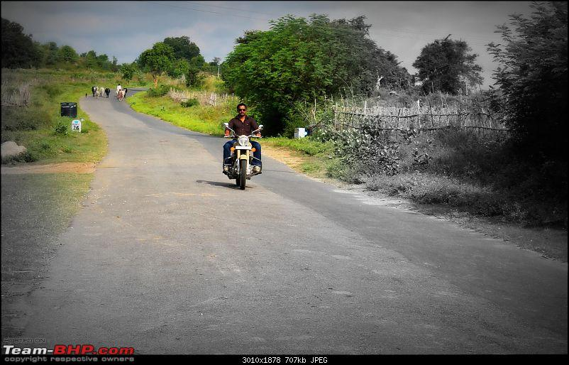 Royal Enfield Desert Storm 500 - The Remembrance of a War Era, My Bullet!-9.jpg