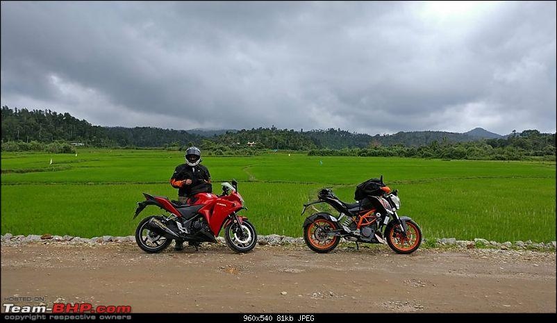 Bangalore - Sunday Morning Short Rides-fields.jpg
