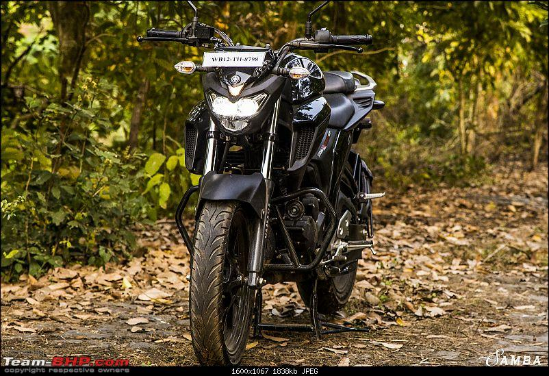Yamaha FZ25 : An Owner's Point of View-front-facing-2.jpg