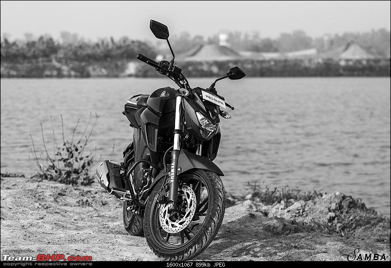 Yamaha FZ25 : An Owner's Point of View-front-facing.jpg