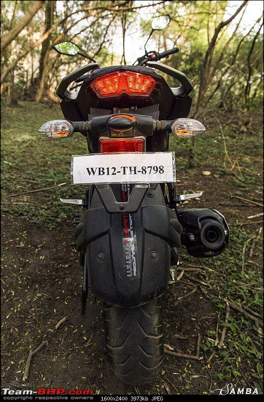 Yamaha FZ25 : An Owner's Point of View-rear-2.jpg