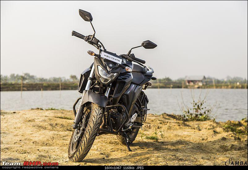 Yamaha FZ25 : An Owner's Point of View-3-quater-view-3.jpg