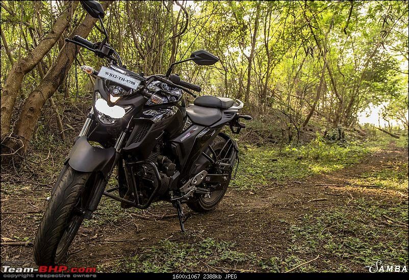 Yamaha FZ25 : An Owner's Point of View-3-quater-view-4.jpg