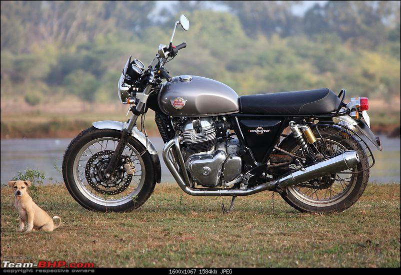 Ridden Royal Enfield Interceptor 650 Continental Gt 650 Twin