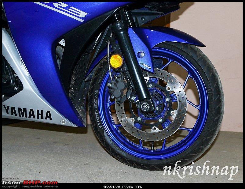 Yamaha YZF-R3 : Ownership Review-fork-protector-2.jpg
