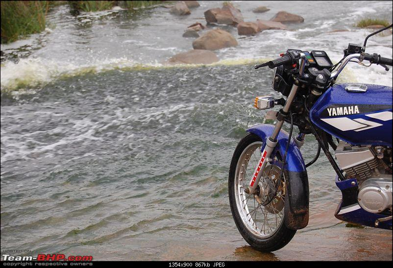 The Yamaha 'RX' Thread (with pics)-dsc_1185m.jpg