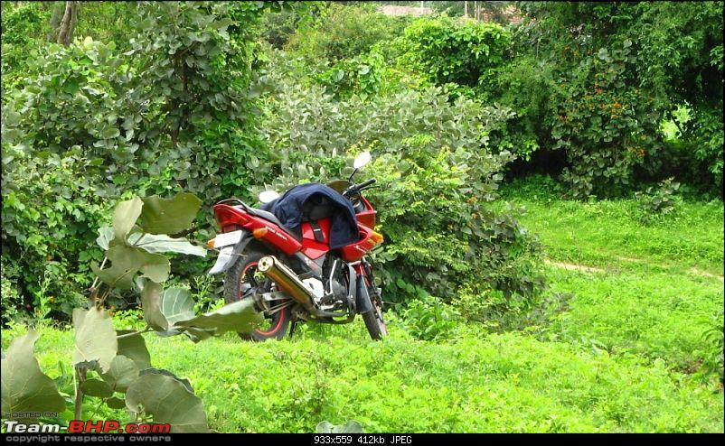Off roading on two wheels-img_0250.jpg