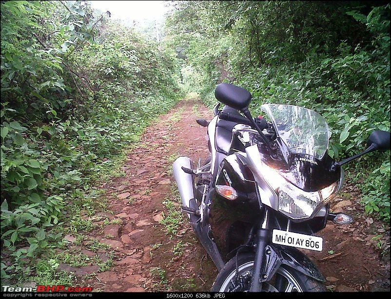Honda CBR 250R - Initial Ownership Review-off-roading-3.jpg