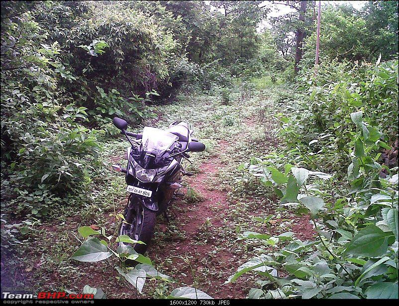 Honda CBR 250R - Initial Ownership Review-off-roading-5.jpg