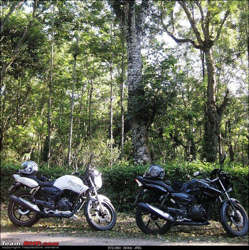 TVS Apache RTR180: Ownership Review-img_0123.jpg