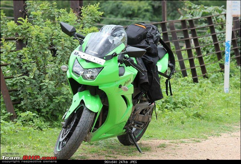 A green Ninja 250R it definitely is!-3.jpg