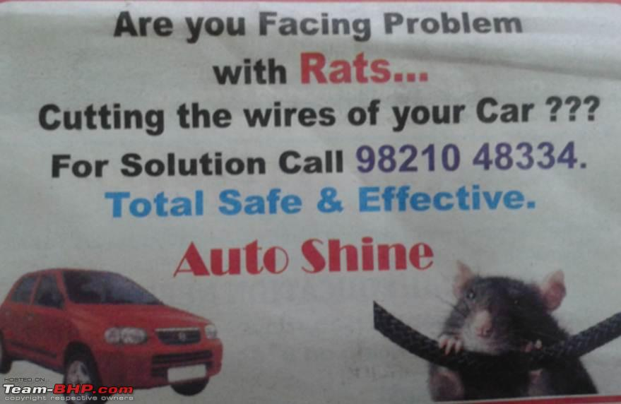 Attractive Mice Chewing Car Wire Solution Images