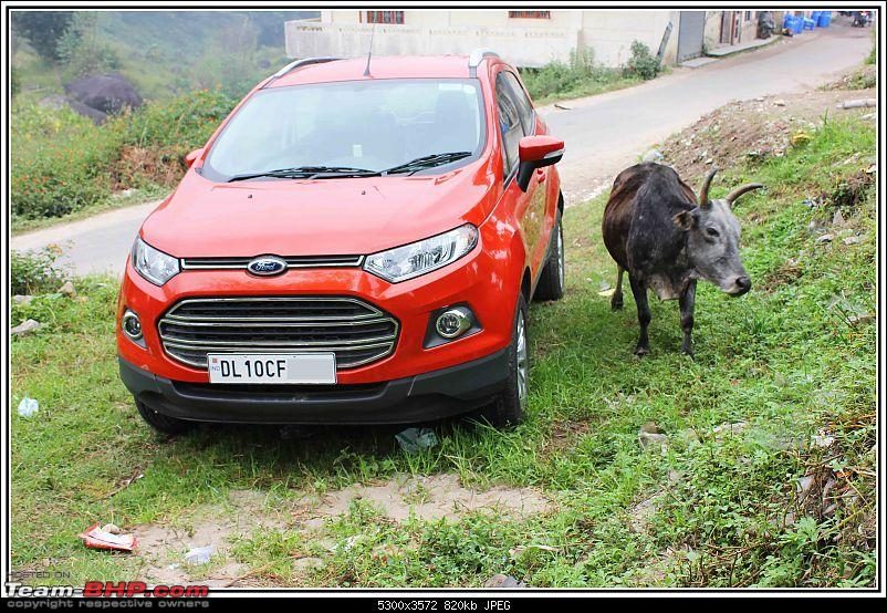 Ford EcoSport : Official Review-img_2931.jpg