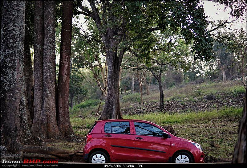 Maruti Celerio : Official Review-imgp0116-2.jpg