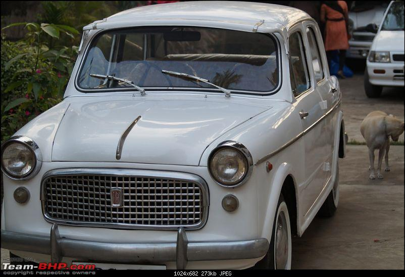 1964 Fiat 1100 Super Select - A little makeover for her 50th Anniversary celebrations!-11.jpg