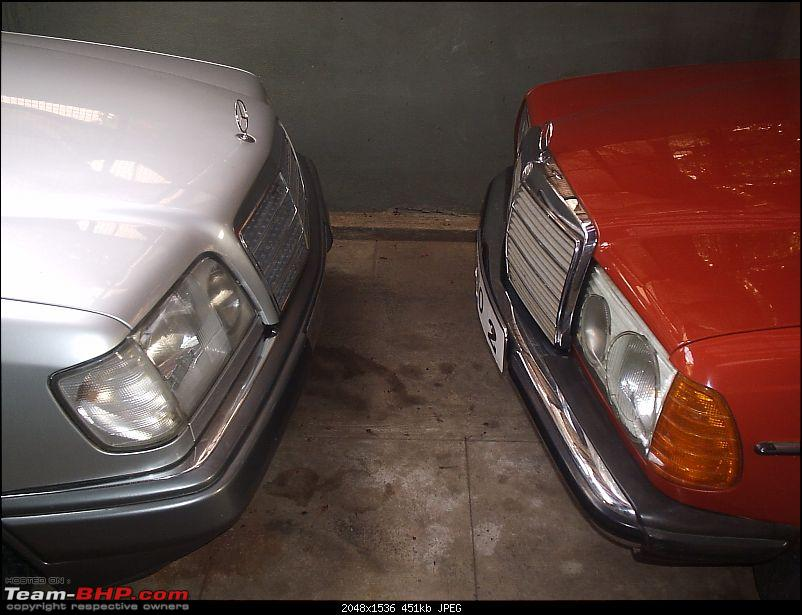 My 1982 Mercedes W123 : Completely restored-p3140365.jpg