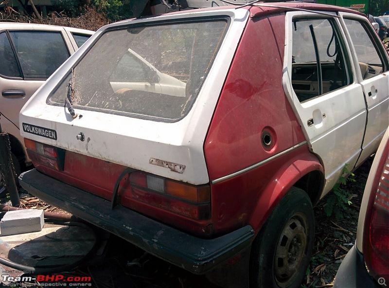 Smokey the rabbit - 1980 VW Golf-img20160825wa0016-1.jpg