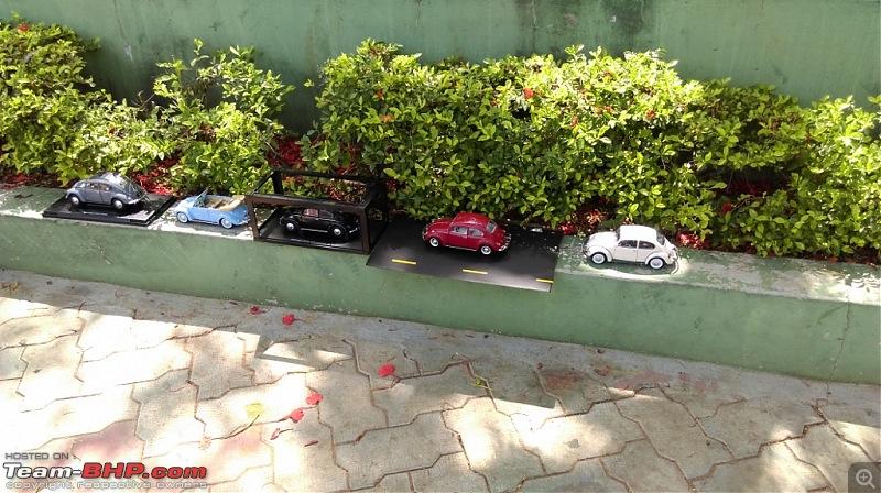 Bangalore Beetle Club (BBC)-imag4403-1024x574.jpg
