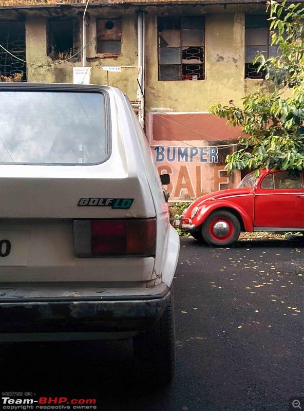 Smokey the rabbit - 1980 VW Golf-7758x1024.jpg