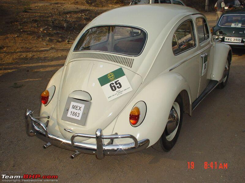Name:  bug02.jpg