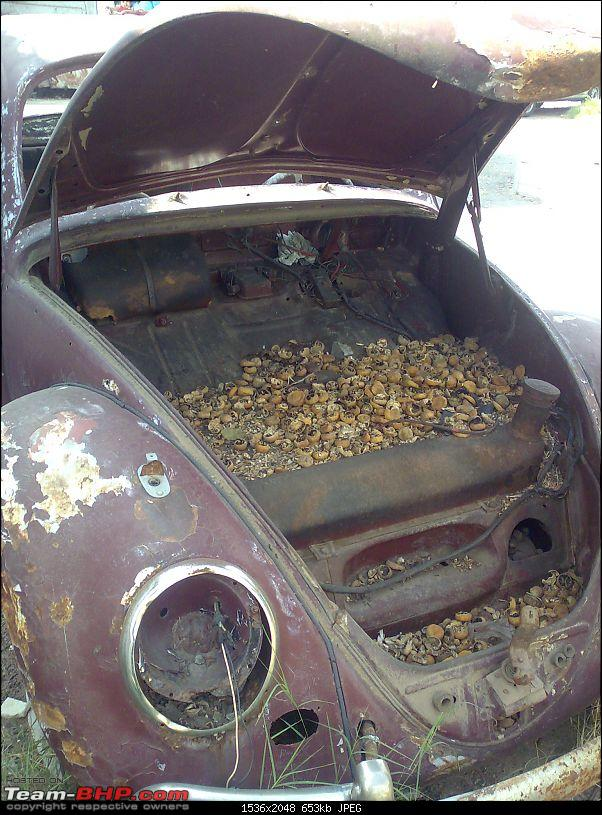 Any info on this Hyd / Del Beetle?-22102009148.jpg