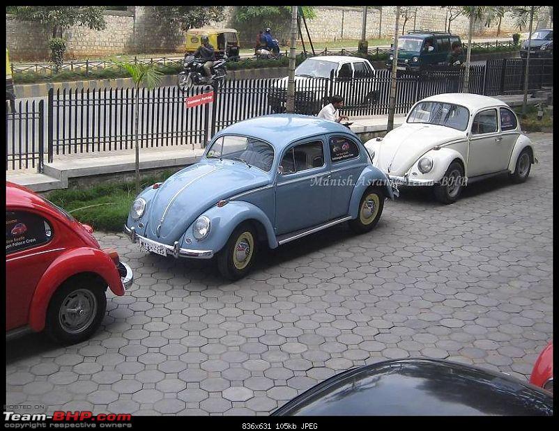 Bangalore Beetle Club (BBC)-img_8142..jpg