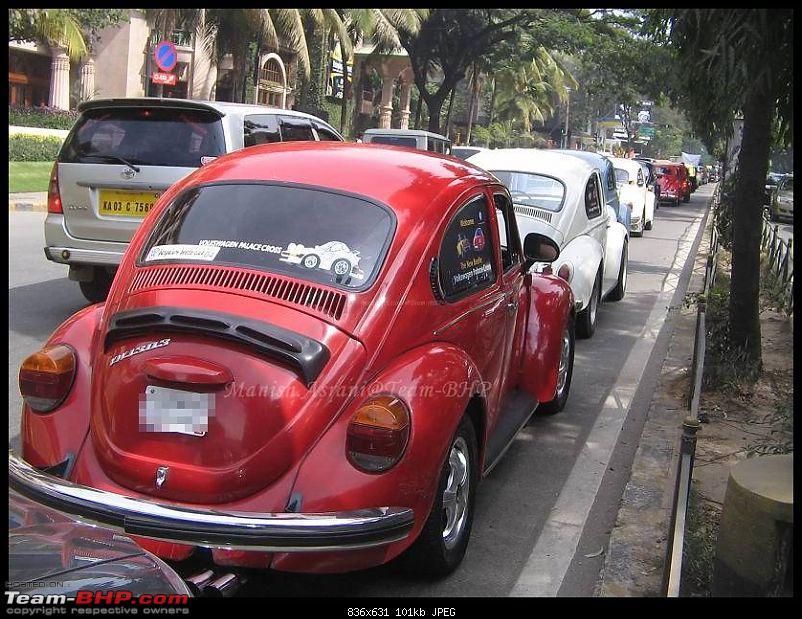 Bangalore Beetle Club (BBC)-img_8296..jpg