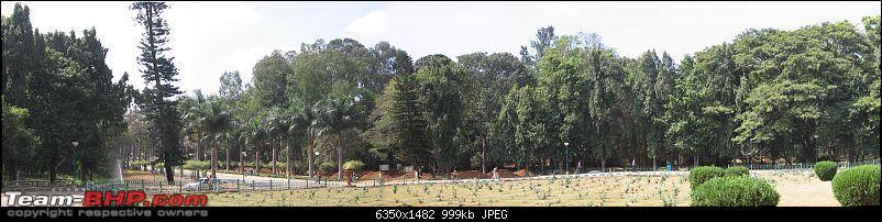 Fiat 1100 Club - Bangalore [FCB]-cubbon-park.jpg